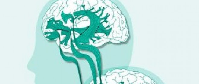 Book review: Mindmelding: Consciousness, Neuroscience, and the Mind's Privacy