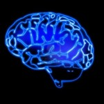 Is it possible to build an artificial superintelligence without fully replicating the human brain ?