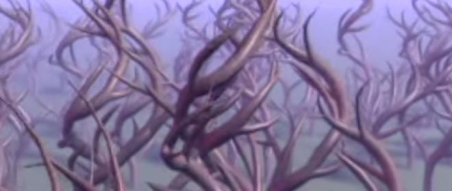Video Friday: Abiogenesis (2014) vs. Panspermia (1990)