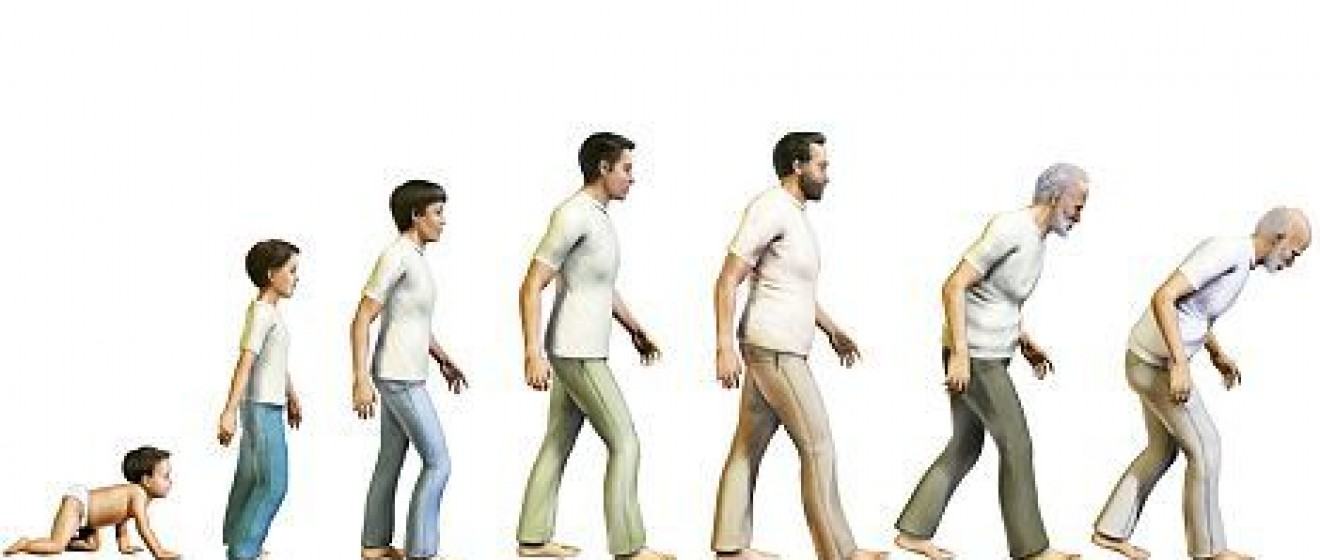 The Seven Stages of Man -- Uncoupling Biological and