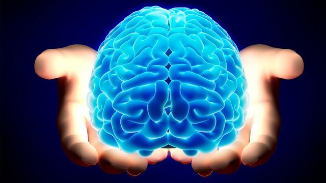 Neuroscience and Free Will - h+ Media