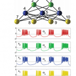 An Advance in Mesoscale Graph Theory with implications for Whole Brain Emulation