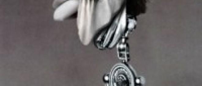 Robot Sex and Companionship