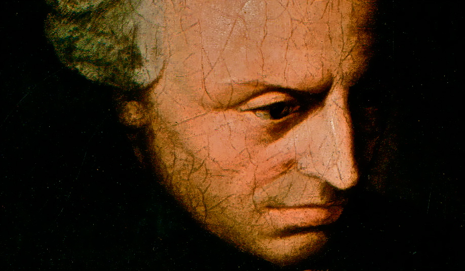 Kantian considerations and sexual morality pity